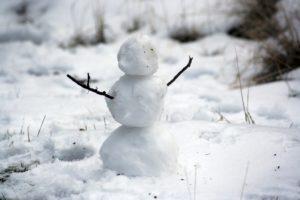 Snow Day Snowman