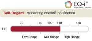 leadership emotional intelligence selfperception
